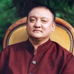 Ο 14ος Σάμαρ Ρίνποτσε, The 14th Shamar Rinpoche